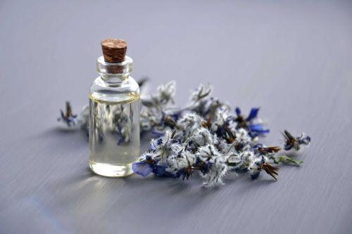 Erboristeria: le 5 erbe medicinali più efficaci contro il raffreddore