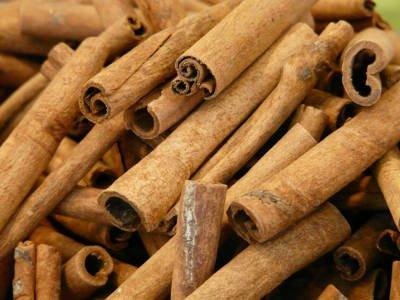 Cinnamomum verum o zeylanicum - corteccia